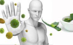 Bağışıklığı Güçlendiren Vitaminler İçin Öneriler
